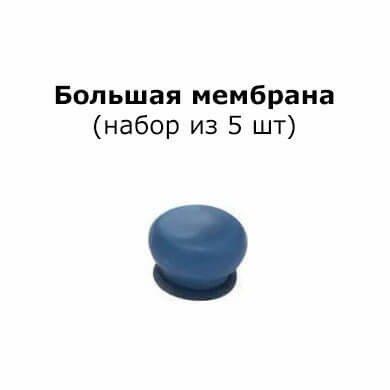 Большая адгезионная мембрана